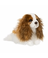 Cavalier King Charles Spaniel knuffel hond 26 cm